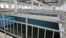 """「济南询价」自来水厂纯净水处理粉末活性炭""""虽粉炭便宜,但消耗大,值得回收利用"""""""